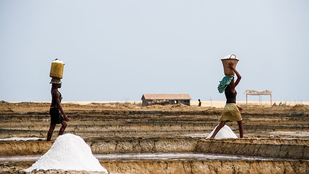 Saline, Salt, Landscape, Woman, Work