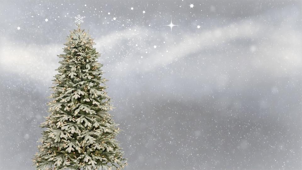 Natale, Albero Di Natale, Cartolina Di Natale