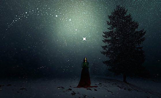 Winter, Snowfall, Woman, Christmas, Fee