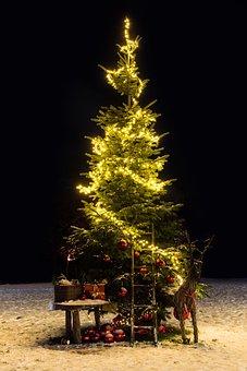 Kerstboom, Kerstmis, Kerstmis Decoratie
