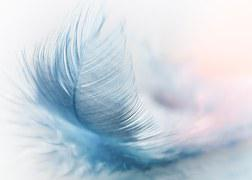 Feather, Ease, Slightly, Blue, Airy