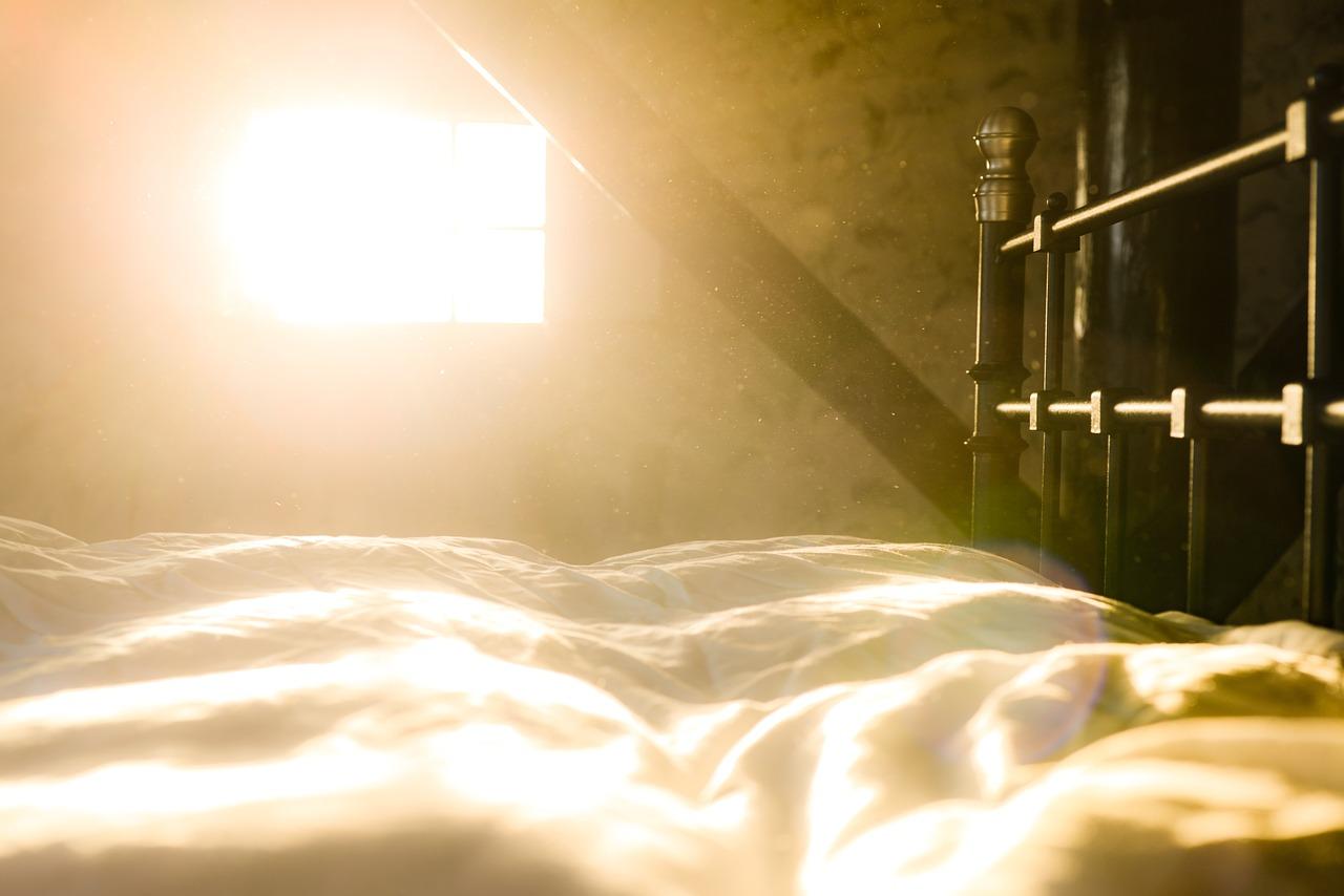 значение сна пыль на фото распространенный