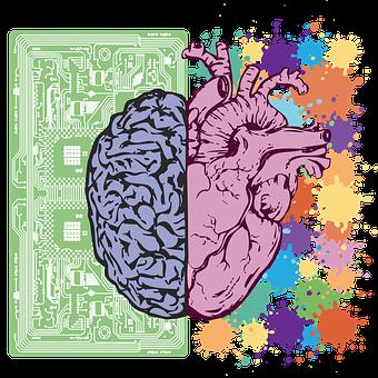 Cerveau, Coeur, L'Équilibre, Émotion