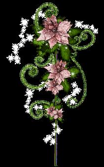 Immagini Natalizie Vettoriali.1 000 Stella Di Natale E Natale Immagini Gratis Pixabay