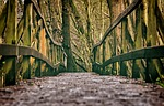 bridge, web, wood
