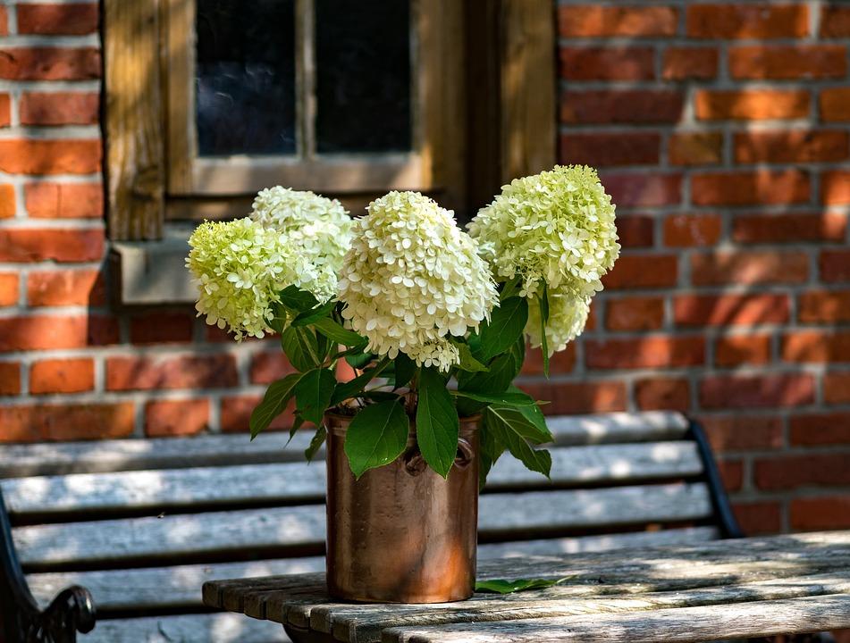 Blumen Tisch Dekoration Kostenloses Foto Auf Pixabay