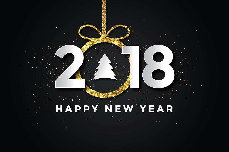 ny år fest Pf 2018 Nytår Godt · Gratis billeder på Pixabay ny år fest