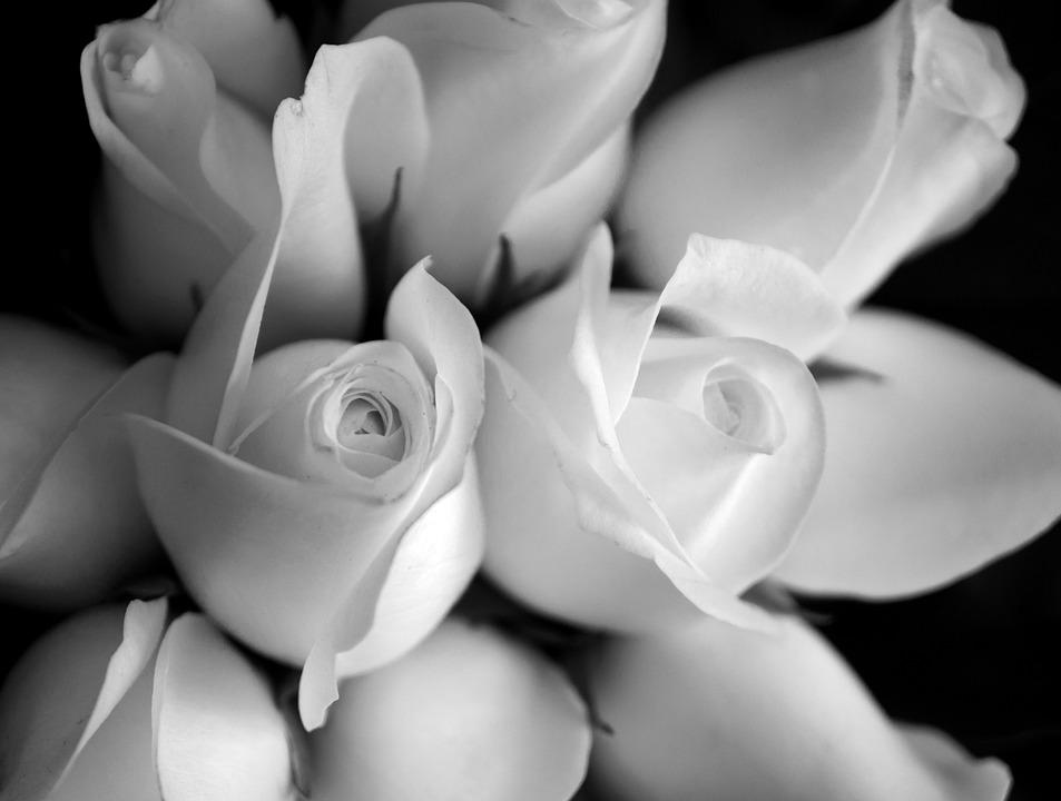 Imágenes De Amor A Blanco Y Negro Eselamornet Todo Sobre El