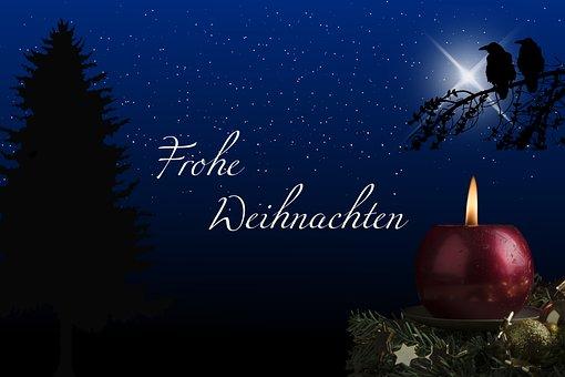 Winter, Dunkelheit, Natur, Weihnachten
