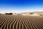 desert, sand, dry