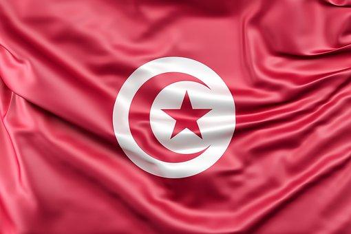 Тунис рассматривает возможности наращивания импорта сельхозпродукции из России