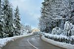 snow, winter, frost