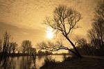 river, banks