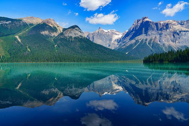 Blue Mountain Coffee Calgary
