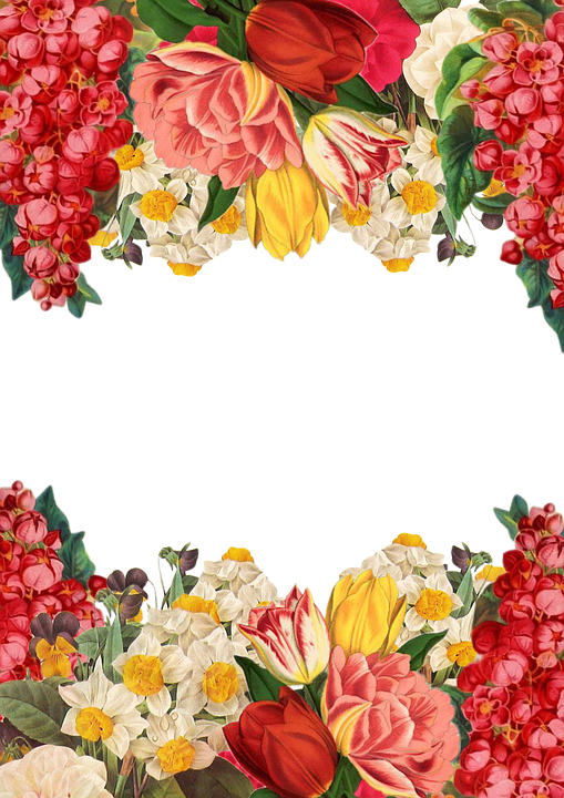 Flower Frame Background Hd