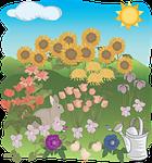 flower, flora, summer