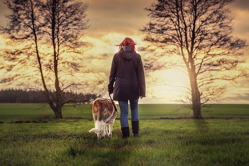 Landscape, Human, Dog, Friends, Nature