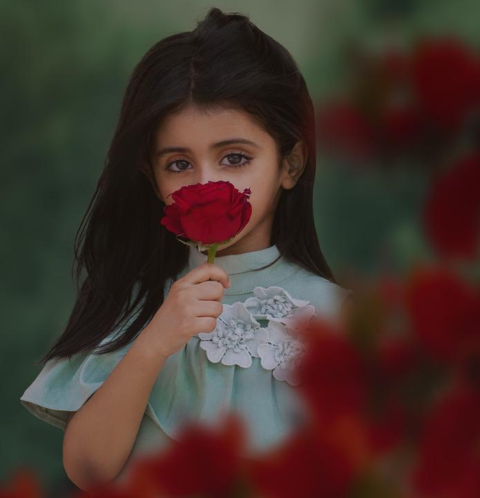 cute portrait rose holding woman flower young pixabay