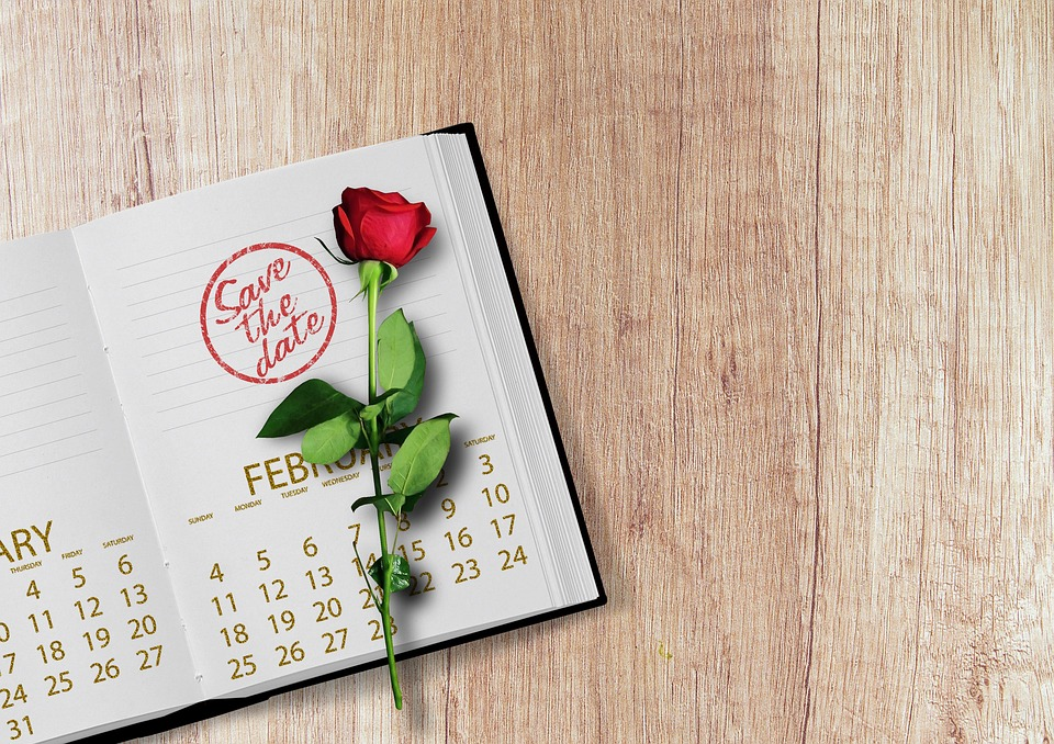 Calendar Rose Day : Free photo calendar rose book stamp date image