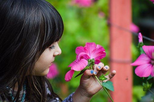 Bouquet, Nature, En Bonne Santé