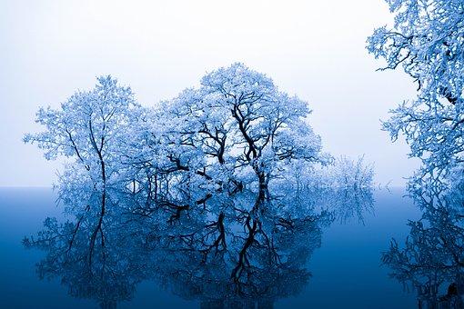 Inspirational background images pixabay download free pictures nature inspiration trees blue voltagebd Images
