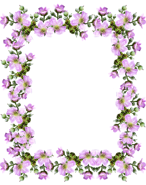 Frame Border Pink · Free photo on Pixabay