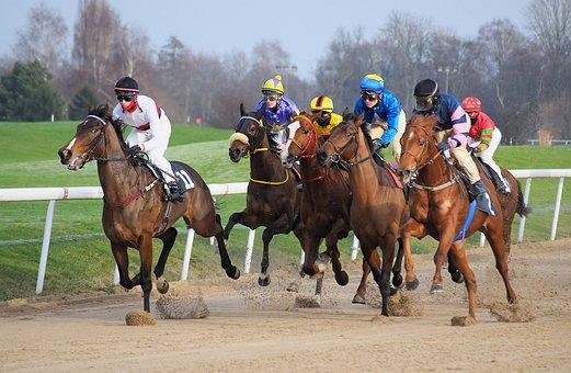 レース トラック, 馬, ジョッキー, レース, 全血, ライター, 競争