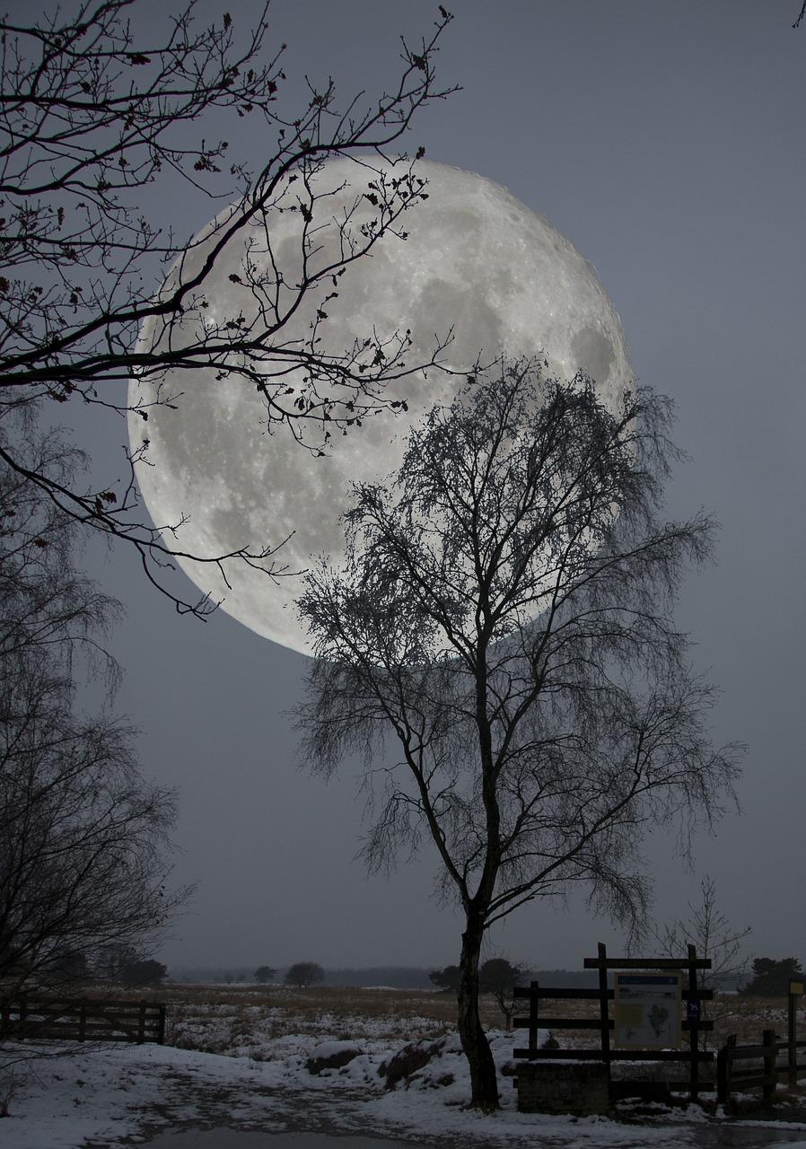 Ночь холодна фото