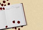 book, wedding