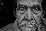 portrait, people, adult