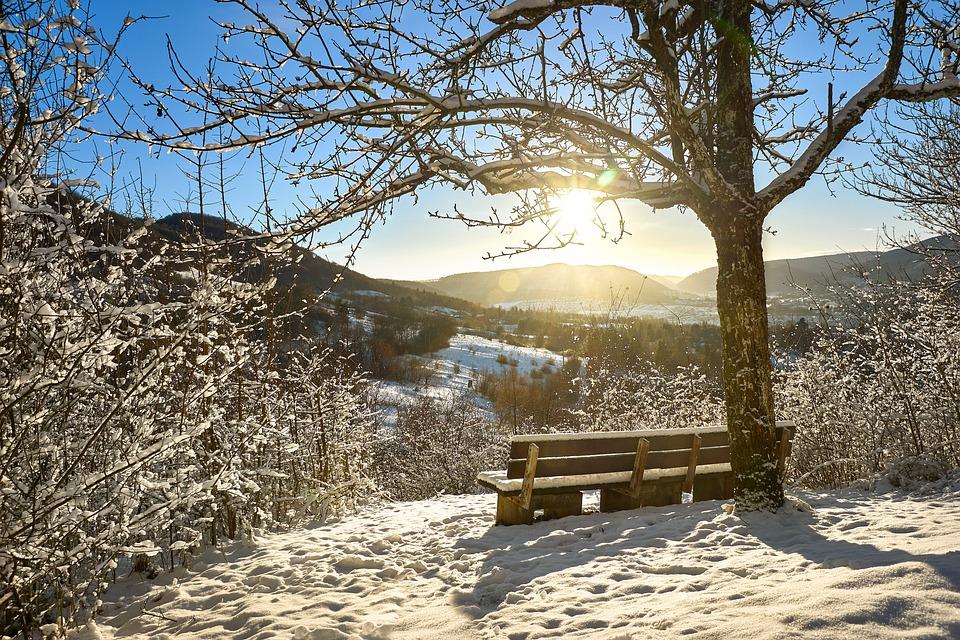 Arbre Nature Paysage Photo Gratuite Sur Pixabay