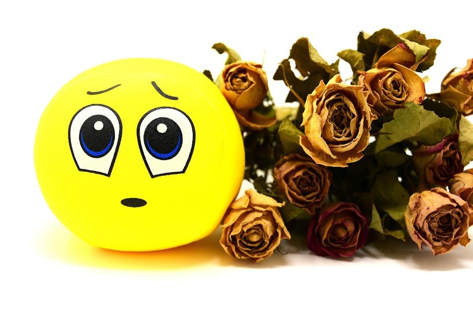Smiley, Triste, Rosas, Secas, Emoticon, Engraçado