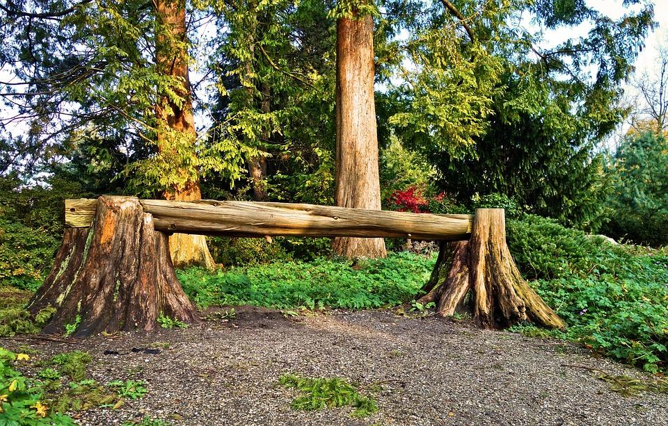 Groovy Bench Log Wooden Free Photo On Pixabay Spiritservingveterans Wood Chair Design Ideas Spiritservingveteransorg
