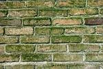 wall, brick wall