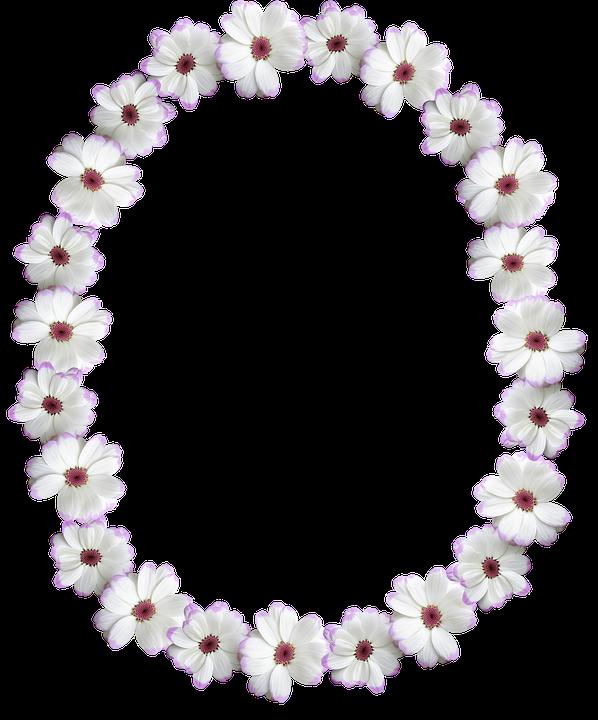 Frame Border Oval White Free Photo On Pixabay