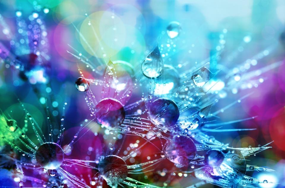 要約, 輝く, 色, 発光, 装飾, 明るい, パターン, 雨, 露, 露の滴, 雨の雫, 水, 液滴