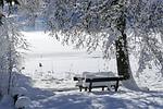 snow, winter, cold