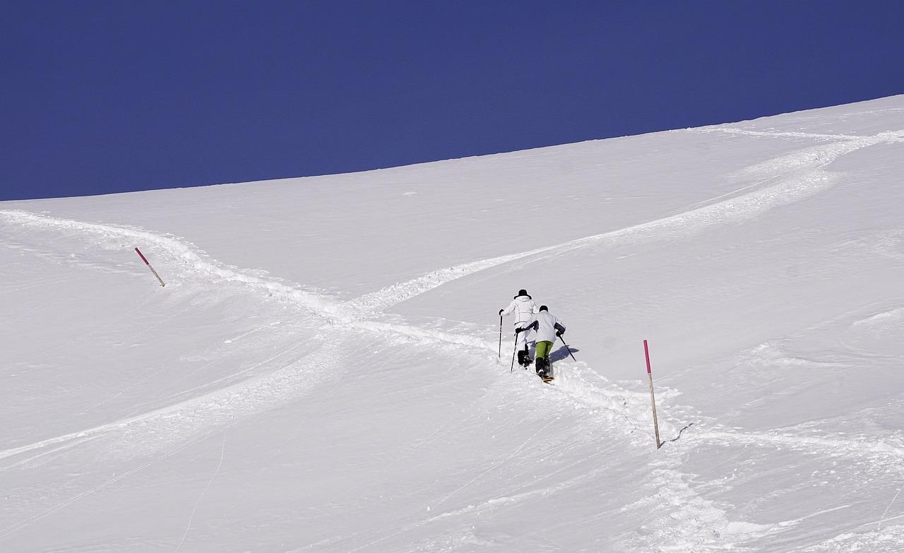 Neve Inverno Freddo - Foto gratis su Pixabay