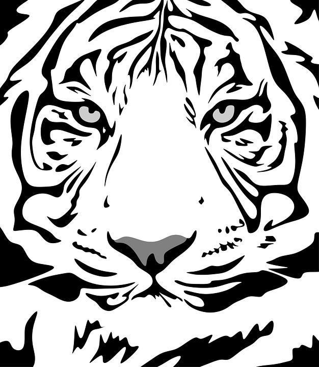10000 Free Drawing Art Images Pixabay