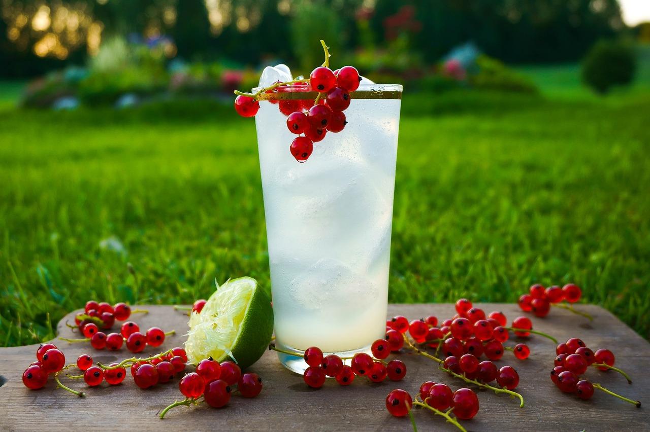 Картинки ягоды на коктейле