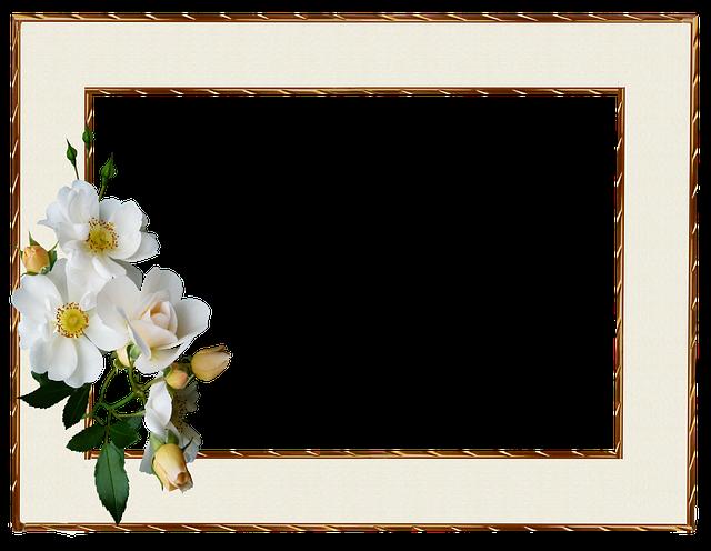 frame gold edge white  u00b7 free photo on pixabay