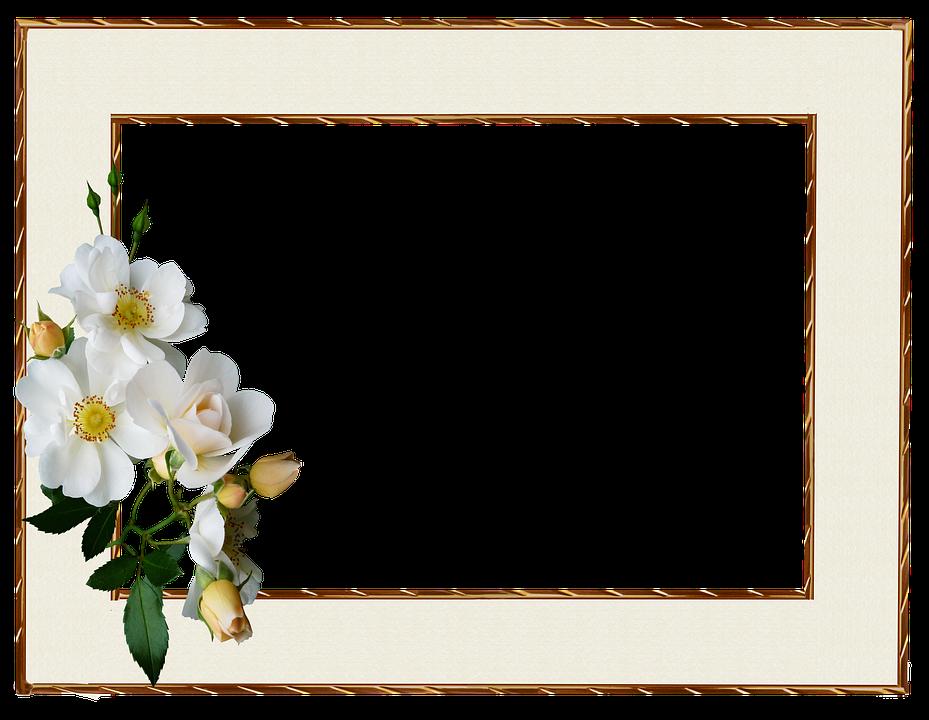 Frame Gold Edge White · Free photo on Pixabay