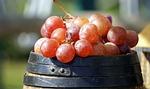 fruit, food, healthy