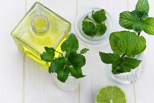Leaf, Mint, Herb, Healthy, Food, Oil