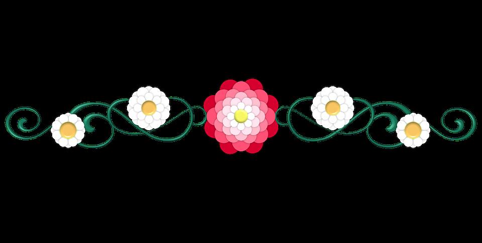 Diviseur, Fleur, Rose, Pétale, Pétales, Blanc