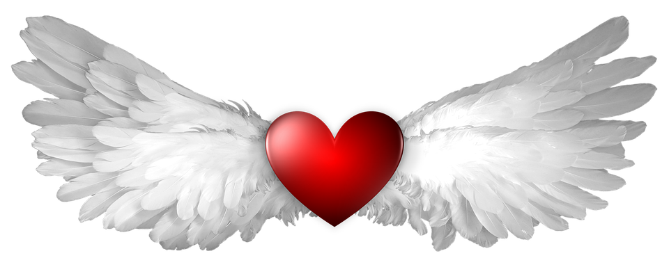 Image result for animated wings of love""