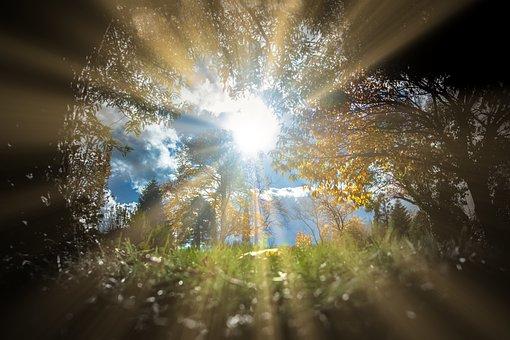 Slunce, Příroda, Západ Slunce, Stromy