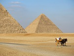 pyramid, desert, camel