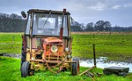 agriculture, farm, field