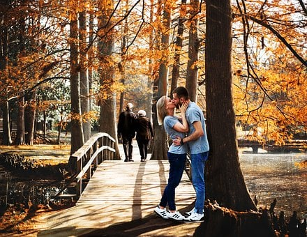Fall, Wood, Tree, People, Outdoors, Park